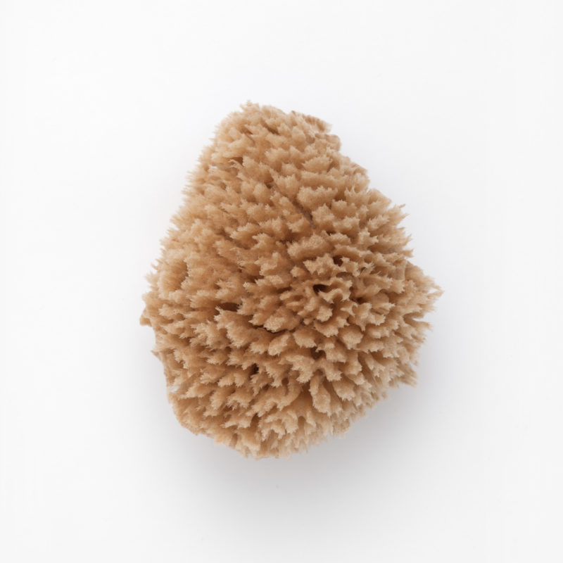 eponge de bain naturelle wool jetronomy